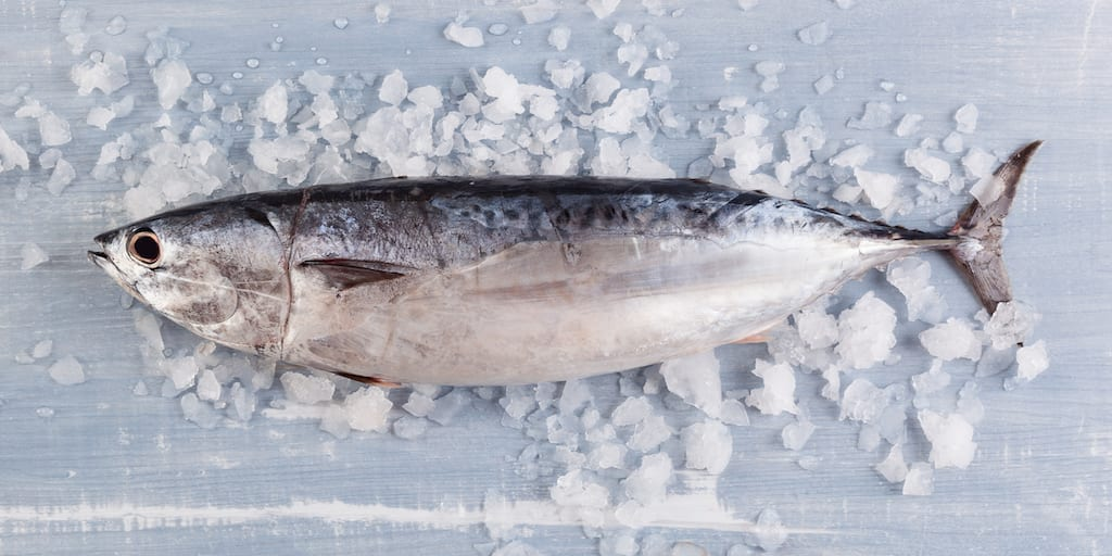 Seafood now contains 283% more parasites