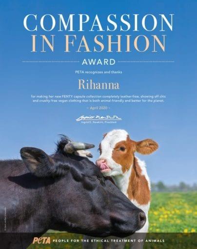 Compassion-in-Fashion-Award-Rihanna