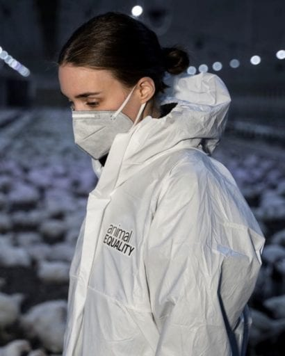Factory farms responsible for breeding contagions like coronavirus say Joaquin Phoenix and Rooney Mara