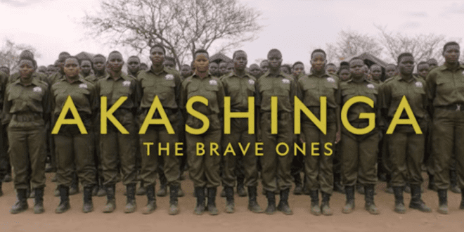 James Cameron new film spotlights female antipoaching warriors Zimbabwe