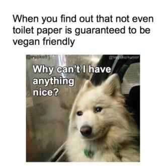 Toilet paper not vegan