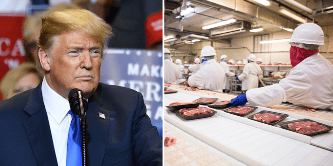 Trump orders meat plants to stay open exposing workers to COVID-19