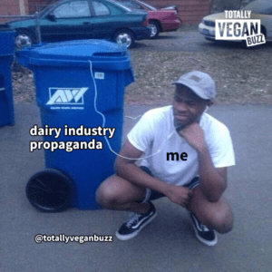 dairy industry
