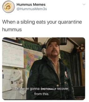 quarantine hummus