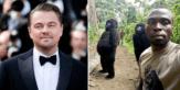 Leonardo DiCaprio launches $2 million fund to protect Africa's heritage gorilla park