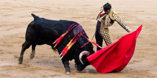 Bogota could be first city in Colombia to ban barbaric bullfights
