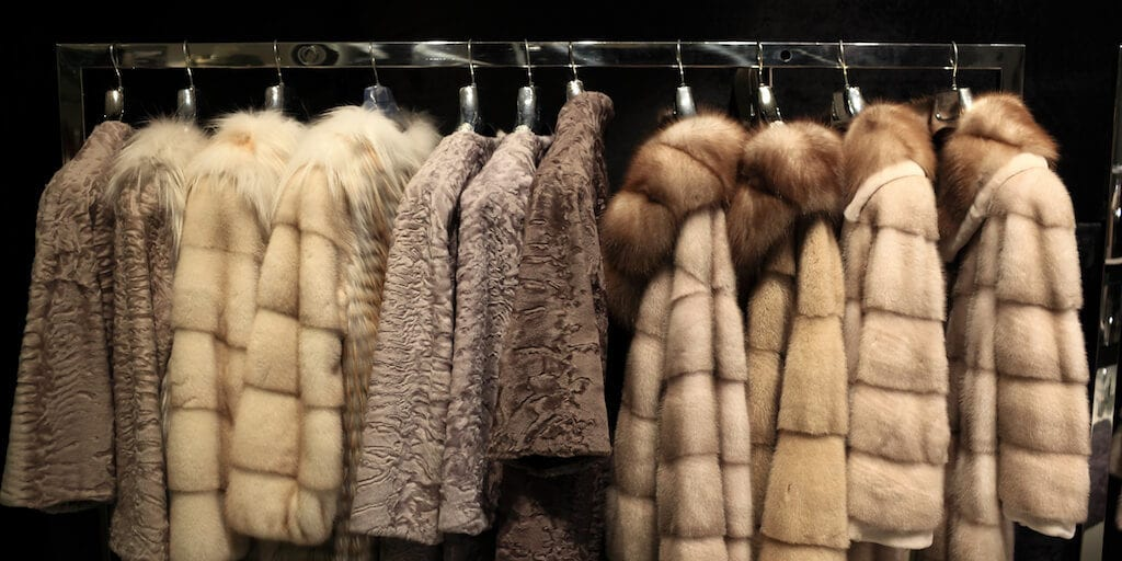 New poll shows over 80% Brits in favour imported animal fur ban