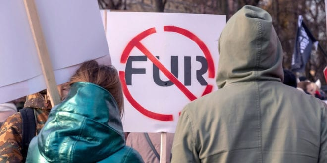 New poll shows over 80% Brits in favour of imported animal fur ban