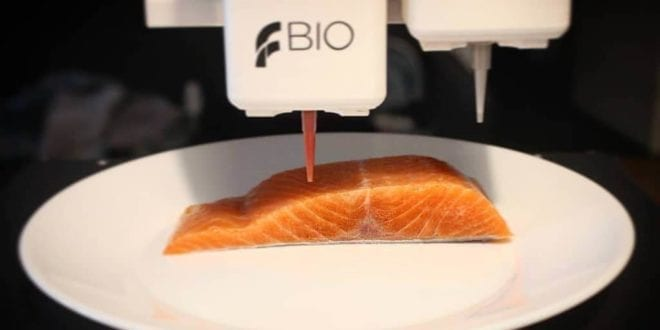 Students create 3D-printed vegan salmon to drive sustainability in the seafood industry