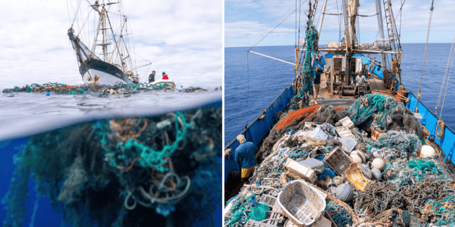 The largest ever ocean clean-up removes 103 tons of plastic waste