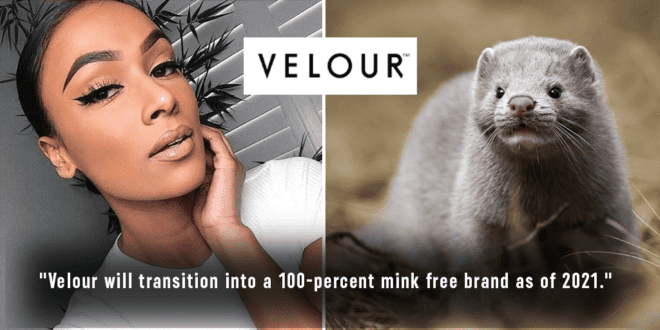 Velour just ban mink fur false eyelashes