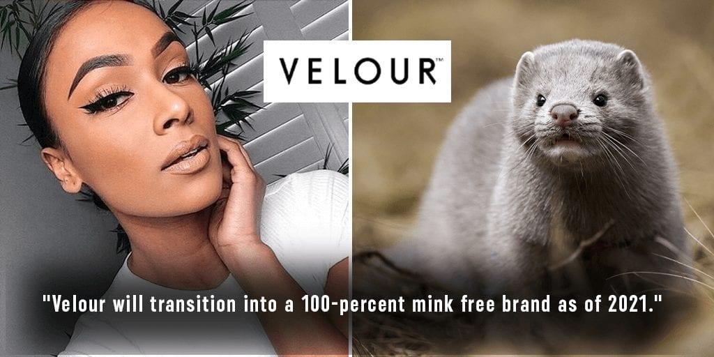 Velour just ban mink fur false eyelashes