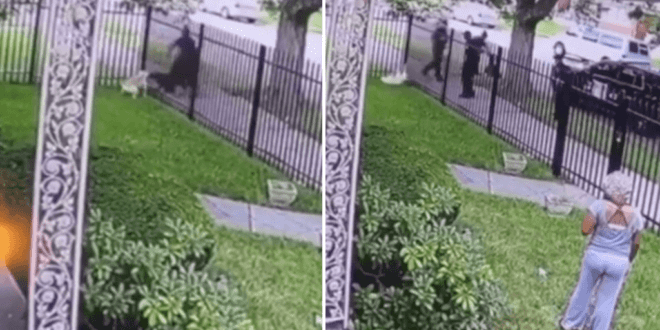 Graphic video shows Detroit cop mercilessly shoot pet dog in its own yard after it clashed with a K-9