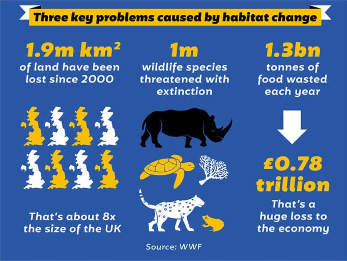 'Catastrophic' human activity responsible for 68% drop wildlife population