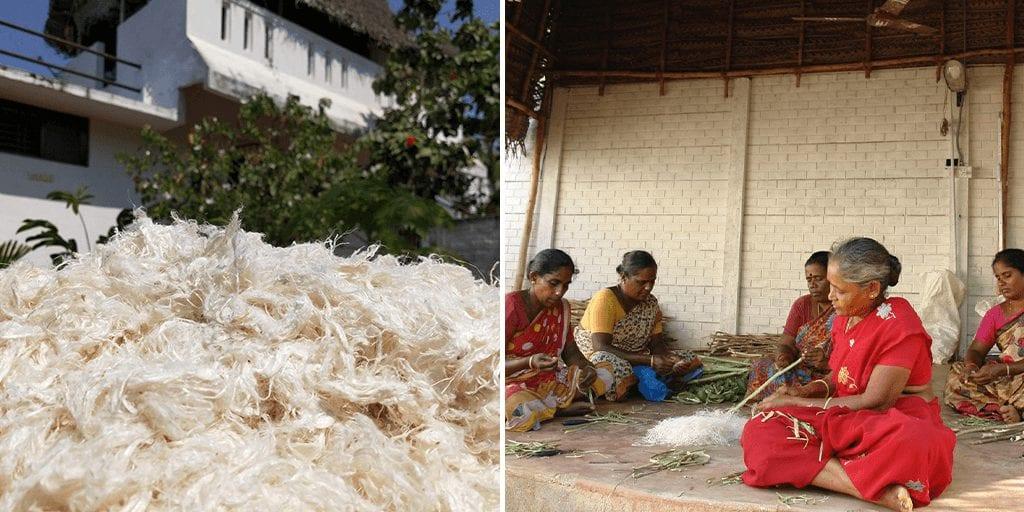 Indian startup creates zero-waste, animal-free vegan cashmere from plants