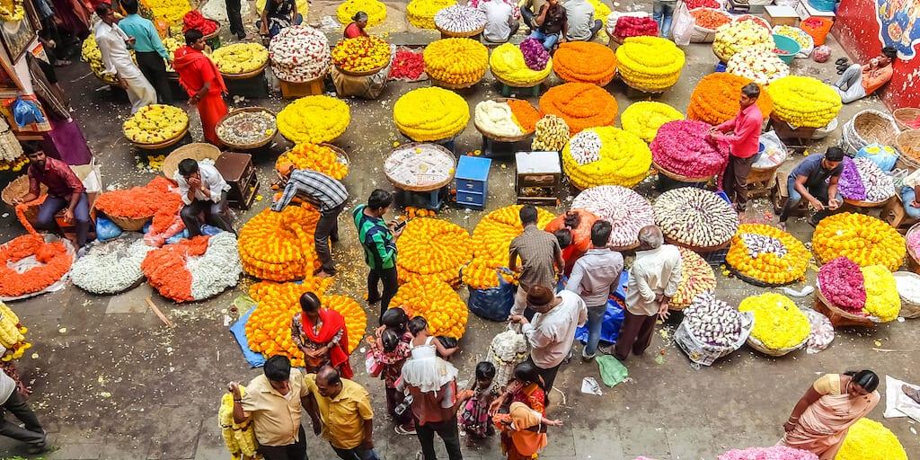 Indian startup makes innovative vegan leather floral waste
