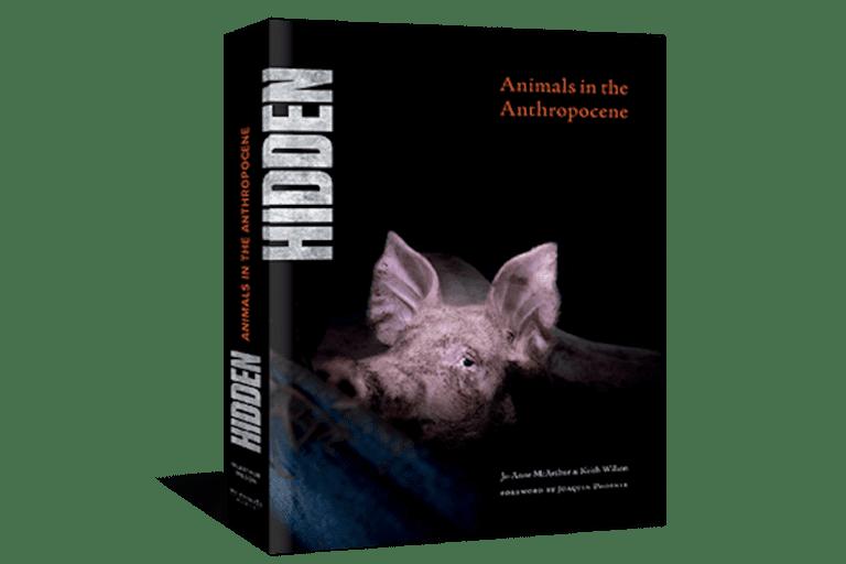 Joaquin Phoenix pens forward for book exposing our 'unpardonable behavior towards animals'