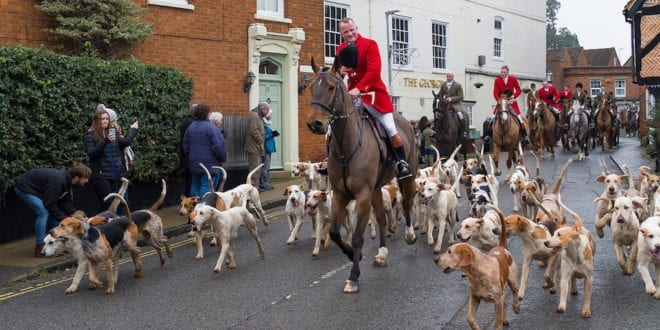 Boxing Day hunts go ahead despite stringent COVID restrictions UK