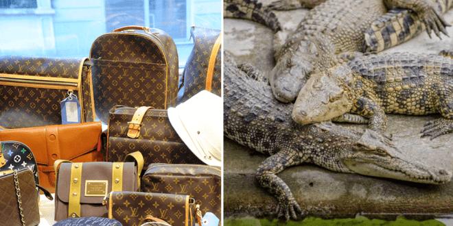 PETA blasts Louis Vuitton over animal claims