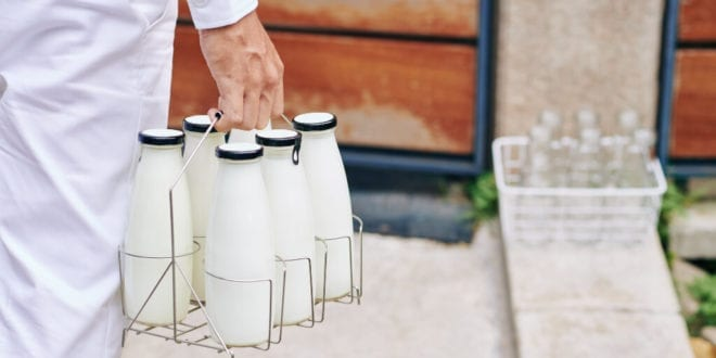Vegan milk sales grow by 36% as dairy sales drop by 12%, USDA report says