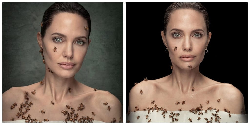 Angelina Jolie poses covered in bees to raise pollinator conservation awareness